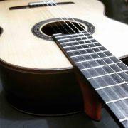guitarra-modelo-maestro 3