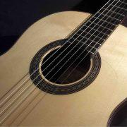 guitarra-modelo-maestro 8